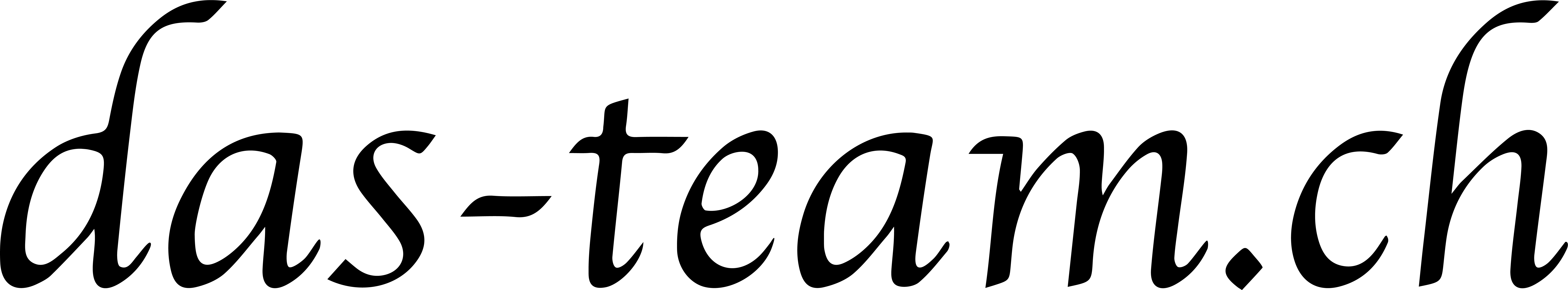 logo-das-team